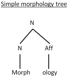 This morphology chart will help teachers understand the