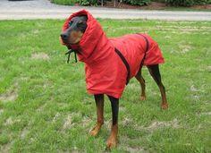 Big Dog Rain/Winter Jacket by TyTzu on Etsy, $55.00.