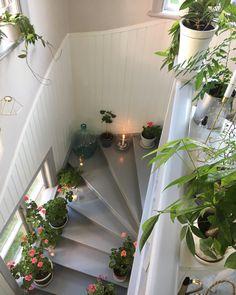 @idamarieaberg ✨#home #interior #interiordesign #flowers #flowerstagram #plants #stairs #lantligt Feels, Stairs, Interior, Plants, Inspiration, Design, Home Decor, Biblical Inspiration, Stairway