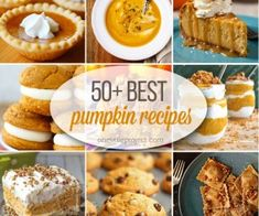 Desserts and Sweets Archives - Page 10 of 13 - One Little Project Best Pumpkin, Pumpkin Recipes, How To Make Diy, Great Recipes, Thanksgiving Recipes, Muffin, Bread, Sweets, Breakfast