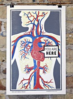 """You Are Here"" anatomy prints (via @itscolossal)"