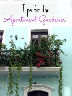 Urban GardeningTips for the Apartment Gardener - You can start a garden on your apartment patio, balcony, or indoors with these container gardening tips.