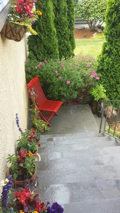 View from my front door looking down the porch stairs where my window boxes and flower pots of zinnias Salvia and begonias are starting to fill in nicely. Old folding chair I rescued from the curb is painted Rustoleum Apple Red.