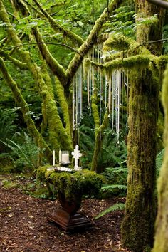 Enchanted Wedding Forest for your greenery wedding! Pagan Wedding, Viking Wedding, Wedding Altars, Celtic Wedding, Wedding Ceremony, Temple Wedding, Wedding Events, Rustic Purple Wedding, Woodland Wedding