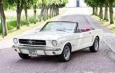 Ready to get your Ford Mustang convertible back into mint condition to cruise? Mustang Cabrio, Ford Mustang Convertible, Classic Mustang, Ford Classic Cars, Old Vintage Cars, Antique Cars, Mustang Rouge, Mustang Girl, Carros Retro