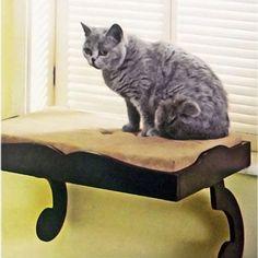 cat furniture decor - Google Search