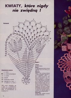 #28_TULIP Crochet Doily (part 2 of 2)