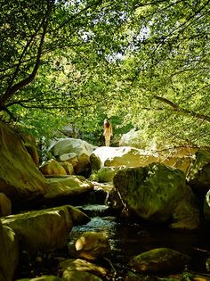 One of the popular swimming holes near Ojai. For the full story, read The Calming Vortex of Ojai.