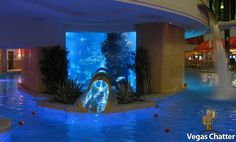 The Golden Nugget In Las Vegas  The notorious Golden Nugget pool is now The Tank - a $30 million complex complete with: A shark tank A 3-story waterslide Fifteen private cabanas.