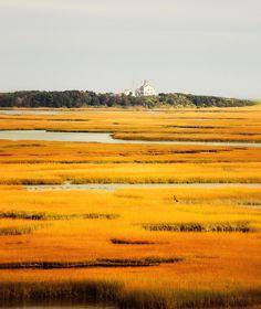 Coast Guard Through the Marsh, Cape Cod, MA│Bablyon and Beyond Photography