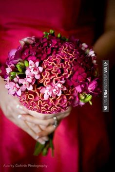 Tight cluster of celosia, bouvardia and freesia for a beautiful wedding bouquet.