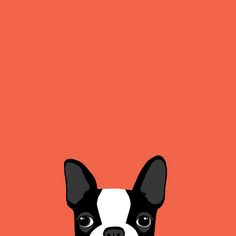 Boston Terrier Art Print by Anne Was Here | Society6