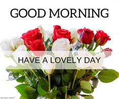 Good morning images with flowers hd have a lovely day. Good Morning Couple, Good Morning Wishes Friends, Flirty Good Morning Quotes, Good Morning Beautiful Pictures, Good Morning Love Messages, Latest Good Morning Images, Good Morning Roses, Good Morning Picture, Morning Pictures