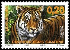 Show Us Your BIG CATS on stamps! - Stamp Community Forum - Page 14