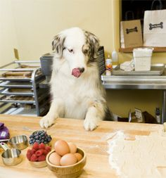 Three Dog Bakery uses only natural wholesome ingredients in their treats and food