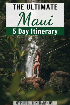 In this 5 day Maui Itinerary I go over all the best stops along the famous Road to Hana in Maui, best snorkeling on Maui, unique things to do in Maui, which excursions are worth paying for, and SO much photography inspiration! During my five days in Maui, I jam-packed all the best things to do on the island + had tons of time to relax! Click to read all about it! #maui #hawaiitravel #mauihawaii California Travel, Hawaii Travel, Travel Usa, Travel Tips, Vacation Trips, Vacation Spots, Vacation Ideas, San Francisco Sites, Best Snorkeling