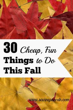 Does your wallet need a break after summer vacation? Check out these 30 Cheap, Fun Things to Do This Fall.