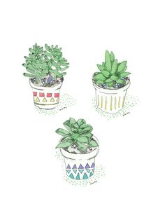 Succulent Mini Prints Set of 3 by allisonberg on Etsy, $15.00