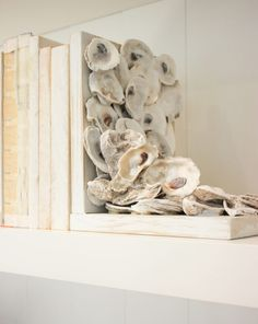 DIY Oyster Shell Bookends: Add some coastal charm to your book shelves. DIY Oyster Shell Bookends: Add some coastal Seashell Art, Seashell Crafts, Beach Crafts, Diy Craft Projects, Decor Crafts, Diy Home Decor, Diy Crafts, Shabby Chic Pink, Oyster Shell Crafts