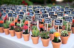 """Pequeñas plantas con las que tus invitados podrán decorar sus casas y ver """"cómo crece"""" vuestro amor."""