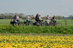#fietsen #holland #hoorn #tulpe #tulips #wetsfriesland #flowers #spring #voorjaar