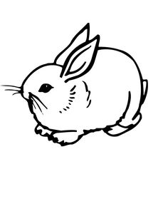 Cute Bunny Coloring Pages free printable coloring page