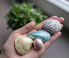 Gypsum 16 seashells set | bathroom decorating summer beach house decor | accessories modern shelf bath home decor seashell metallic wedding  Made in Poland.  #seashells #gypsumdecor #bathroomdecor #beachhouse #wedding #decor #summerdecor #weddingdecor#justinecrafts #jdecor