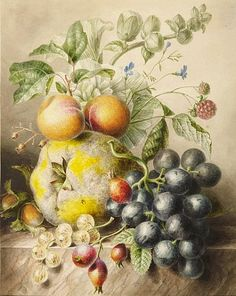 Willem Hekking Sr. Apricots on a Branch First half 19th century