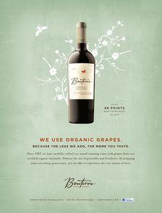BONTERRA   Scott Pridgen Design Co.