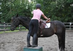 5 Tips for Mounting Manners - I need this, the horse even looks like my horse.