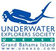 Bahamas Scuba Diving & Interactive Dolphin Activities