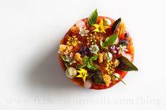 Frances Cotonelli Tomato Lobster Disc