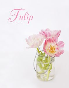 Tulip Wedding Bouquet in Consol, does it get any more awesome and Labola!  I love tulips in bouquets, table decor and pretty much everywhere. In South Africa tulips are found predominantly in April, one of our biggest wedding months locally. Visit my website and www.fb.com/labolaweddings for more info and ideas