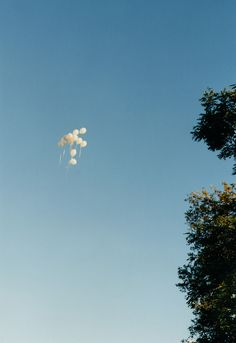 Seeing balloons float away has always made me a little sad..