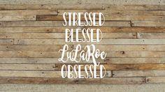 stressed blessed lularoe obsessed// lularoe decal// lularoe consultant // lularoe team gifts// lularoe leggings// lularoe unicorns// by itcomesfromdehart on Etsy https://www.etsy.com/listing/469315387/stressed-blessed-lularoe-obsessed