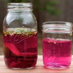 Acqua aromatizzata 10 ricette
