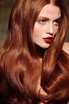Cynthia Rose   Portfolio Portfolios   Beauty
