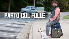 """Prova a guardare """"Parto Col Folle"""" su Netflix"""