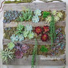 succulent pallet planter