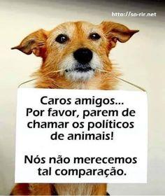 se amamos os nossos animais não os comparemos com lixo... :-(