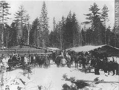 lumberjack camp at Ferry Bank, Oromocto, N.-B, Canada,