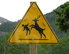 Deer Dance Party. Is this sign warning against dancing with deer or encouraging it?