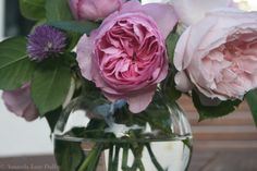 Still Life Photograph of Pink Roses in Glass Bowl, Nature Photography, Wall Decor, Shabby Chic Art. Shabby Chic Kunst, Tudor Style Homes, Vintage Nursery, Hand Painted Furniture, Nature Photography, Floral Photography, Pink Roses, Etsy Seller, Artsy