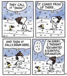 First Appearance: December 11 1999 Peanuts Cartoon, Peanuts Snoopy, Peanuts Comics, Snoopy Cartoon, Old Cartoons, Funny Cartoons, Snoopy Comics, Happy Comics, Charles Shultz