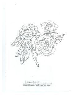 Gallery.ru / Фото #1 - Favorite Roses Coloring Book - lenadep ...