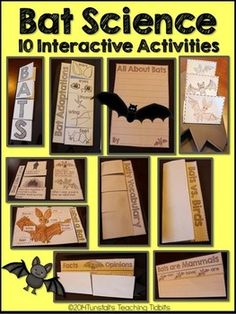Bats! Bats! Bats! 10 Interactive Science Bat Activities!   Fill your science notebook or create a 3 dimensional multi-page bat  book full of interactive hands on science lessons!  Included: Bats- What do you know about bats? Bat Life Cycle Label A Bat Bat Facts and Opinions  Bats Can Have Are (prewriting) All About Bats Writing (differentiated writing lines) Bat Vocabulary (8 words)  Bats vs.