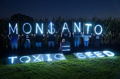 @OLBLightBrigade - Saturday (Oct. 12th 2013) is a big day of action against Monsanto. We took our lights out to a local cornfield. Monsanto is bad for our food and bad for our planet. #IdleNoMore