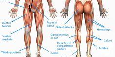 Carlsbad Boot Camp - Leg Muscles