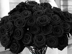 Love the deep red color. Picture Of Bouquet Red Roses Beautiful Black Love, Black Is Beautiful, Beautiful Roses, All Black, Black And White, Pretty Roses, Wonderful Flowers, Romantic Roses, Young Black
