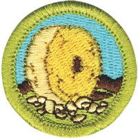 This looks like an interesting badge which they could work on together, but without a counselor in the troop to give them a little nudge, I could picture this dragging on for months. I'll go ahead and pass the requirements on to the PLC in case they are interested in pursuing it though. Since they are looking for new ideas, this might spark something. Or maybe they just want to do some of the requirements without pursuing the badge.